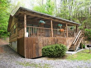 AFTERNOON DELIGHT - Gatlinburg vacation rentals