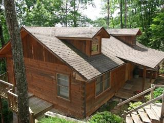 BEAR TRACKS - Sevierville vacation rentals