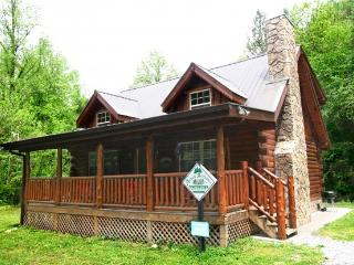 BEARY DASHING - Sevierville vacation rentals