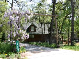 Log House on Trout Stream, Spa, Local Hiking - Gold Country vacation rentals