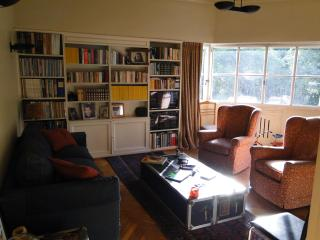 Gorgeous Three Bedroom with Balcony in Palermo - Buenos Aires vacation rentals