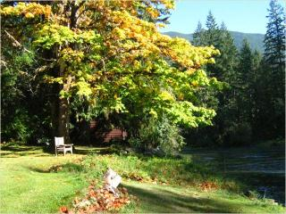 Cowichan Riverside Cottage - Lake Cowichan vacation rentals