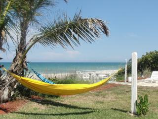Million Dollar Oceanfront Beach House Heated Pool - Melbourne Beach vacation rentals