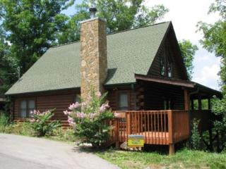 Precious Memories - Pigeon Forge vacation rentals