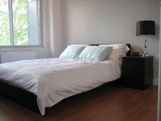 Only 400 meters from the Montreal Jazz Festival!! - Quebec vacation rentals