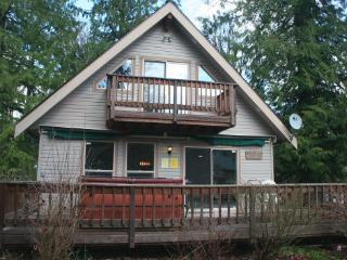 Mt Baker Rim Cabin #24 - A pet friendly cabin with a hot tub and game room! - Glacier vacation rentals