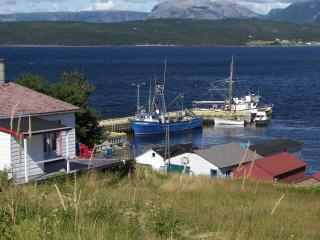 Whales pass by your door inside National Park - Bonne Bay vacation rentals