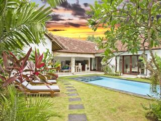 ONLY 150USD/NIGHT! WITH AIRPORT PICK UP INCLUDED! - Seminyak vacation rentals