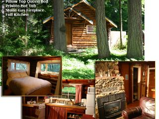 Copper Creek Log Cabin @ Mt. Rainier - Ashford vacation rentals