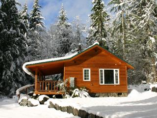 Dreamweaver Cabin @ Mt. Rainier - Mount Rainier National Park vacation rentals