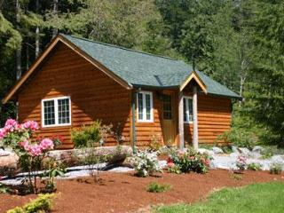 Art Studio Cabin @ Mt. Rainier - Mount Rainier National Park vacation rentals