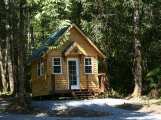 Sky and Snow Cabins @ Mt. Rainier - Mount Rainier National Park vacation rentals