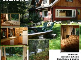Copper Creekside Cabin @ Mt. Rainier - Mount Rainier National Park vacation rentals