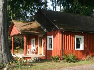 Cedar Springs Cabin at Mt. Rainier - Mount Rainier National Park vacation rentals