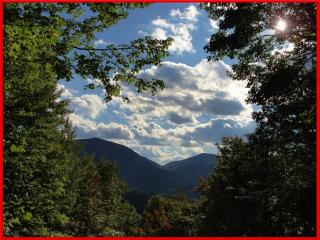 Trish's Place - Private, Quiet and a Hot tub - Maggie Valley vacation rentals