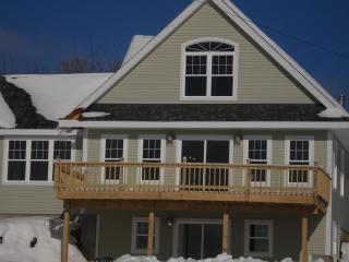 Brand New Vacation Rental w/Spectacular View! - Westmore vacation rentals