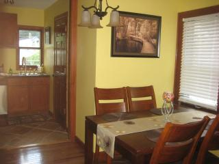 Charming home steps away Minnehaha Falls & train - Minneapolis vacation rentals