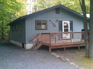 Mt. Pocono area, 3bd, 2bth, w/spectacular hot tub - Tobyhanna vacation rentals