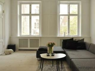 Roundtower - Downtown Luxury - 102 - Copenhagen vacation rentals