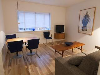 Center 101 - Reykjavik vacation rentals