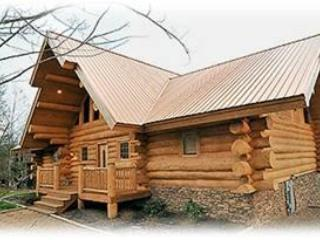 Dreaming Bears- Spectacular 5BR Log Home - Image 1 - Gatlinburg - rentals