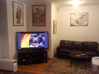 Luxury and Value.  Close to City & McCormick Place - Chicago vacation rentals