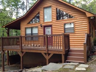 Bear's Den - Murphy vacation rentals