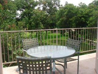 Gorgeous 2/2 Guadalupe River Resort Condo - New Braunfels vacation rentals