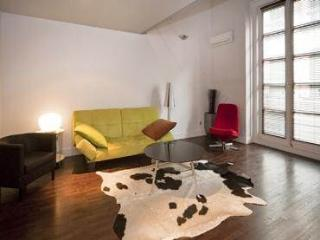 Beautiful Loft in Historical Madrid Area Latina 7 - World vacation rentals