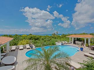 PAMPLEMOUSSE...an entertainer's delight! Great villa for a groupl of good friends wanting to party! - Terres Basses vacation rentals