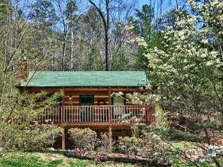 Wonderfully Romantic and Cozy Cabin Convenient to Pigeon Forge!  BAREHG - Sevierville vacation rentals