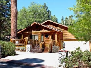 Pine Cone Lodge - 3 Bedroom Vacation Rental in Big Bear Lake - Big Bear Lake vacation rentals