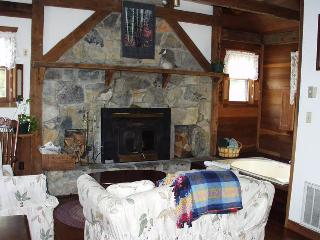 Osceola Mill Cabins - Steeles Tavern vacation rentals