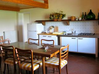 Costiera - Sovicille vacation rentals