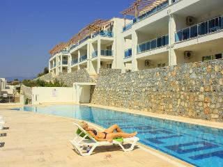 Flipflops 1 bed apartment with stunning sea views - Gulluk vacation rentals