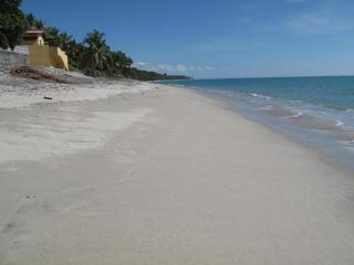 Suites on the Beach - Beachfront Luxury! - Panama vacation rentals