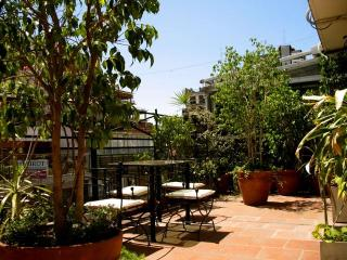 2 bedroom 4-5 PAX terrace + BBQ  Recoleta in BA - Buenos Aires vacation rentals