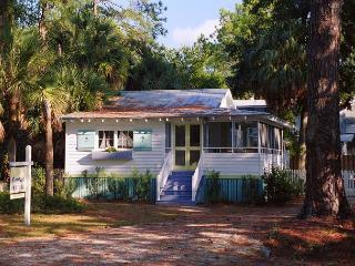 1208 Second Avenue/Palm Cottage - Georgia Coast vacation rentals