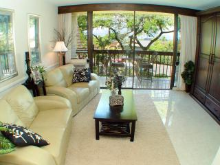 Affordable Luxury Condo on Sunny Maui - Kihei vacation rentals