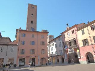 loft in medieval tower - Piedmont vacation rentals