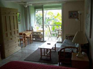 Romantic Oceanfront Studio Condo In Downtown Kona - Kona Coast vacation rentals