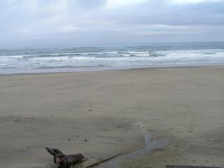 Heartrock Beachfront Cottage - Lincoln City vacation rentals