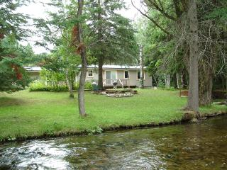 1 & 2 bedroom houses on the Sturgeon River - Northeast Michigan vacation rentals