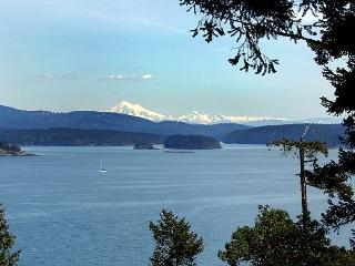Haida House on San Juan Island - Eastsound vacation rentals