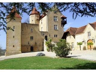 Chateau De Bearn - Bearn vacation rentals