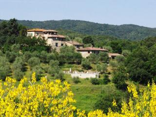 Trebiano : Charming apt 2 pers. with view - Murlo vacation rentals