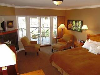 Awesome Sidney Ocean View Studio Suite Close to Ocean and Beaches - Vancouver Island vacation rentals