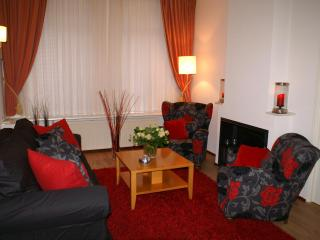The Hague Cozy apartment w/garden near beach/see - The Hague vacation rentals