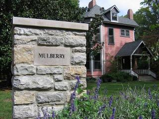 Mulberry House - Nashville vacation rentals