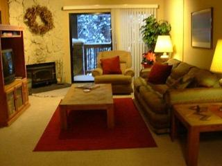 Walking Distance to Eagle Express Mammoth Ski Home - Mammoth Lakes vacation rentals